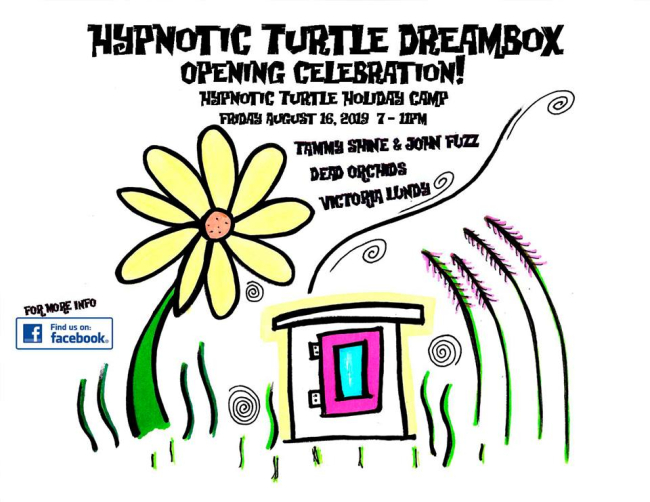 Hypnotic Turtle DreamBox - Opening Celebration!